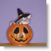 pumpkin-cat-1
